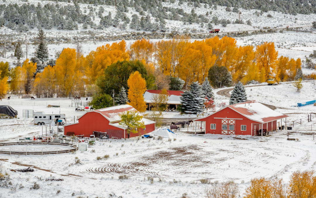 Metal Roof vs. Shingles In Cold Climates