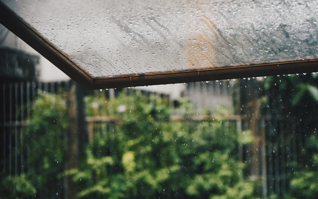 Rain and moisture building up on glass